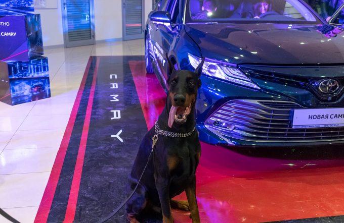 Презентация Toyota Camry2018